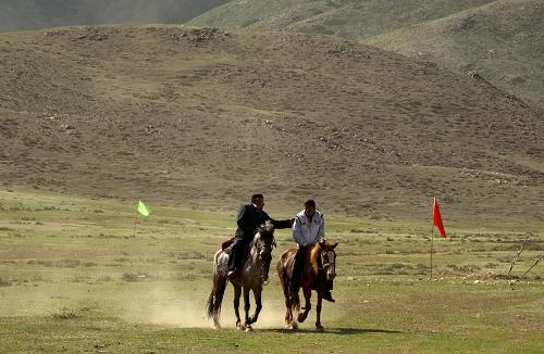 新疆阿勒泰草原风情正浓